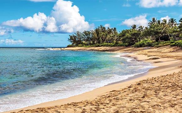 Hawaii with Oahu & Maui