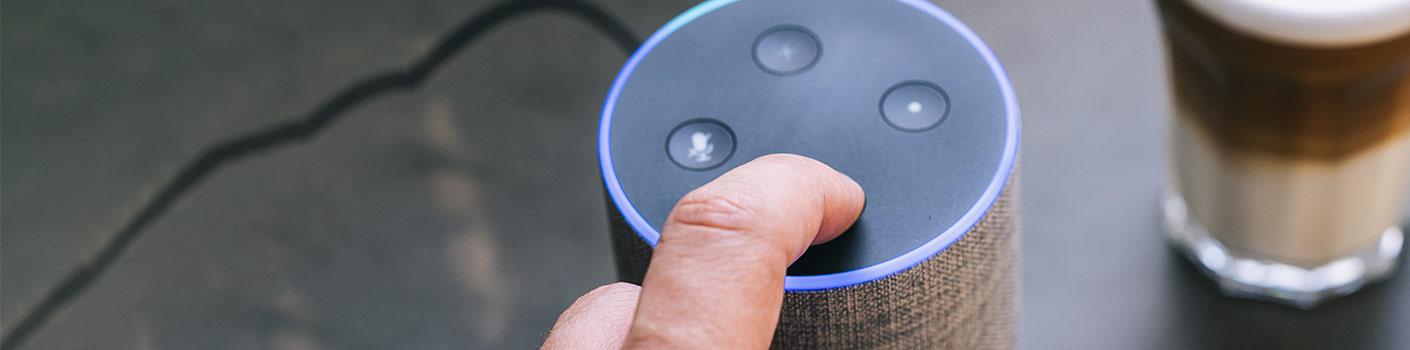 Using smart speaker