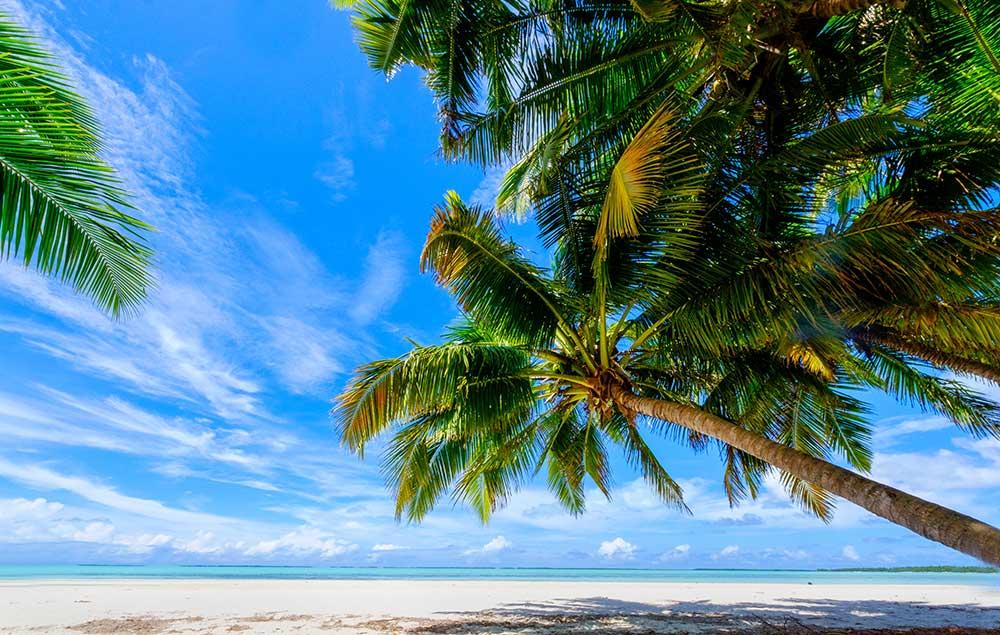 Indian Ocean paradise