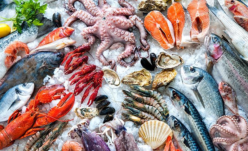 Guidelines for safe seafood storage